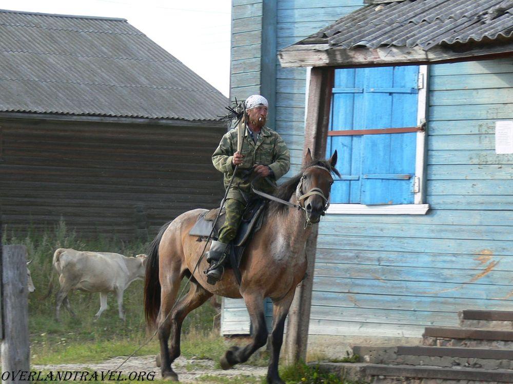 Костромская область, местный ковбой.