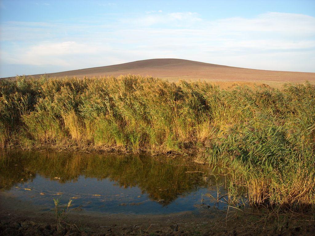 Таманский полуостров, Гора Горелая или Куку-Оба (Синяя гора) грязевой вулкан.