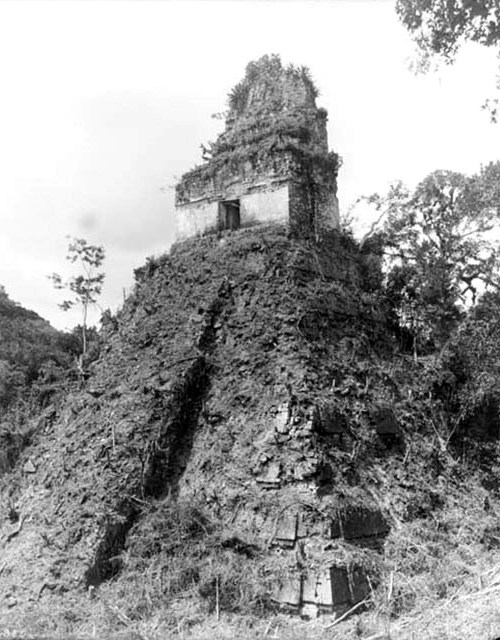 Tikal - So we look to the pyramid clearing of jungle thickets.