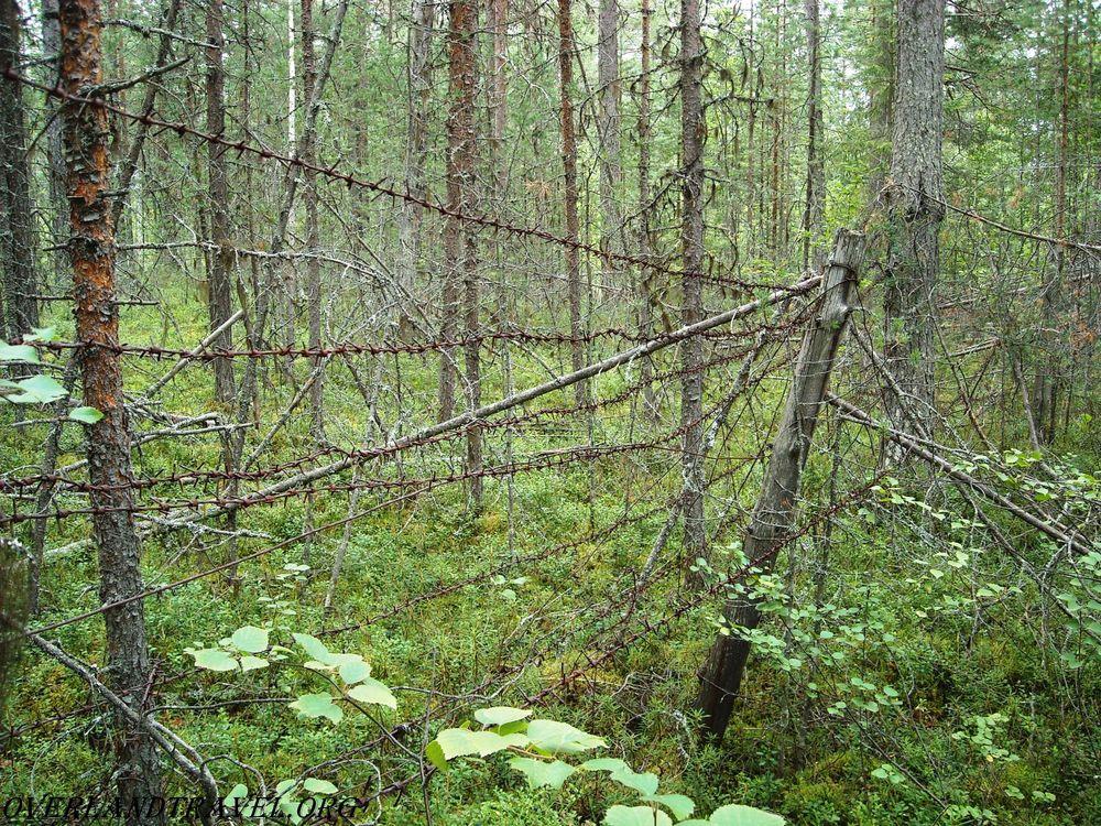 Louhi-Kestenga, Karelian Front, WWII.